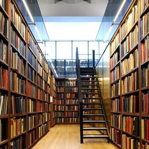 Библиотеки Великих Лук